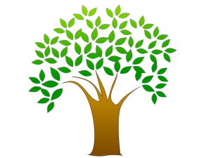 tree-with-leaves-pv